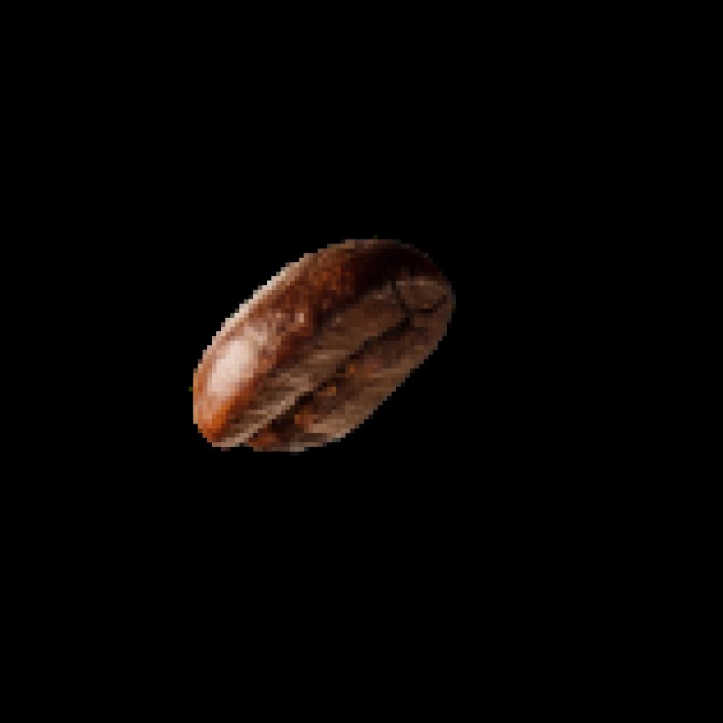 demo-attachment-35-coffee-beans-P4MXYZD-1