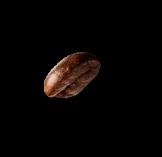 demo-attachment-20-coffee-beans-P4MXYZD