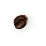 demo-attachment-28-coffee-beans-P4MXYZD2-1